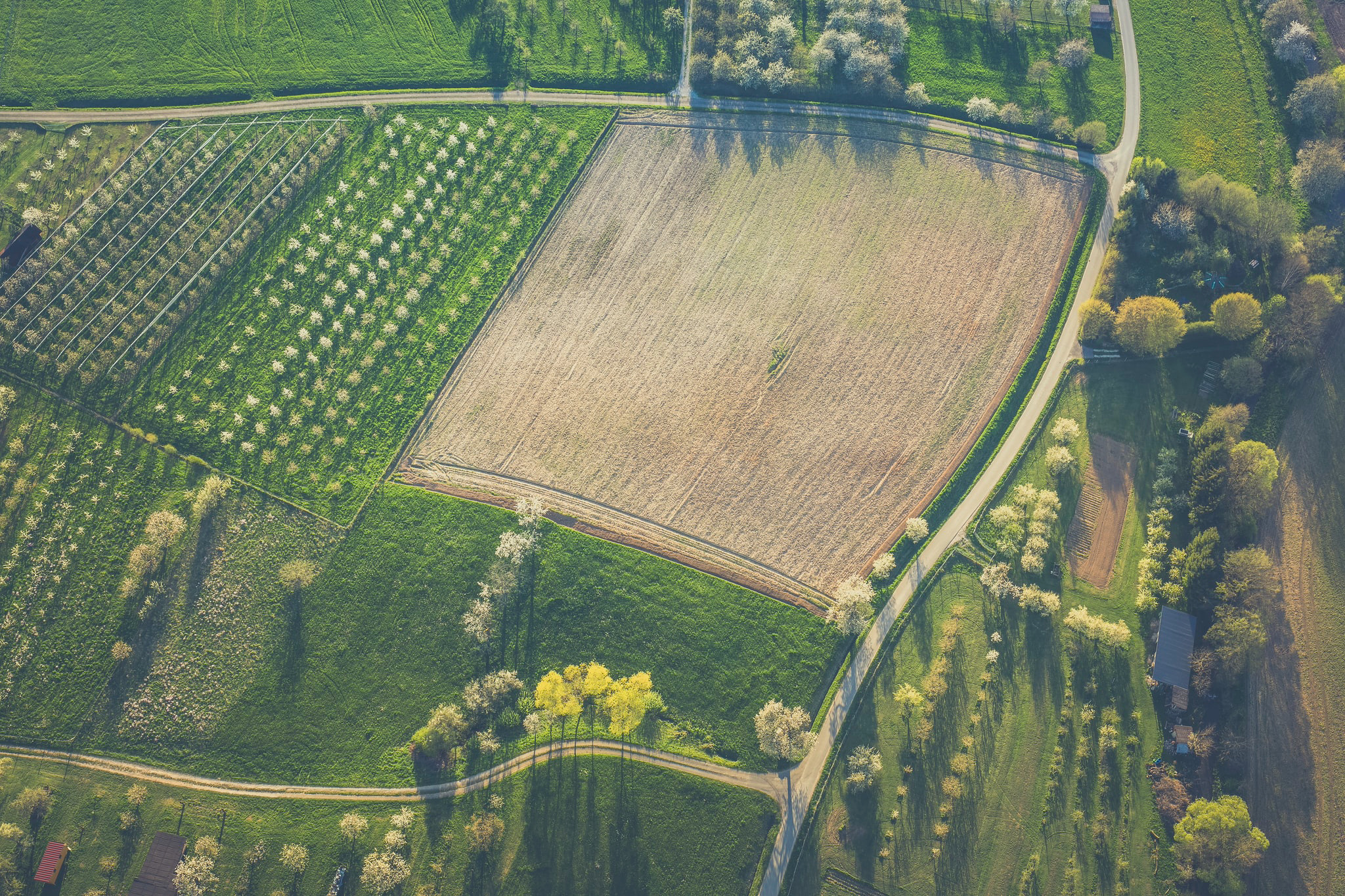 Bio-Remediation of Gasoline Contamination (Agricultural Property)